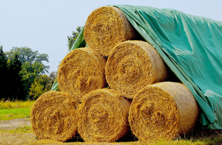 Straw bale cover fleece / beet cover fleece